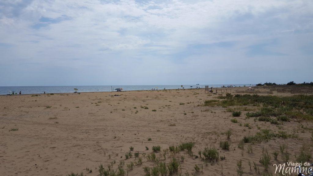 spiaggia libera Bibione pineda