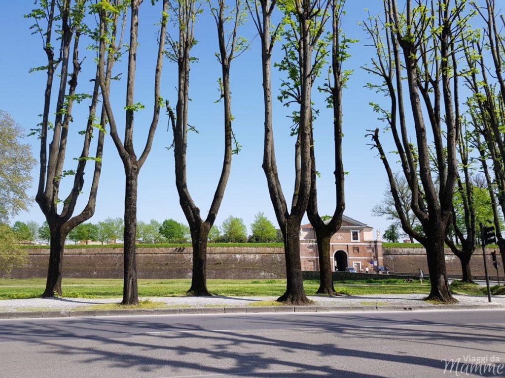 Lucca da visitare