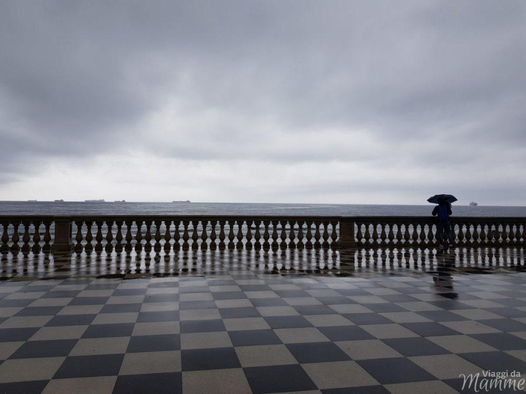 Acquario Livorno indirizzo
