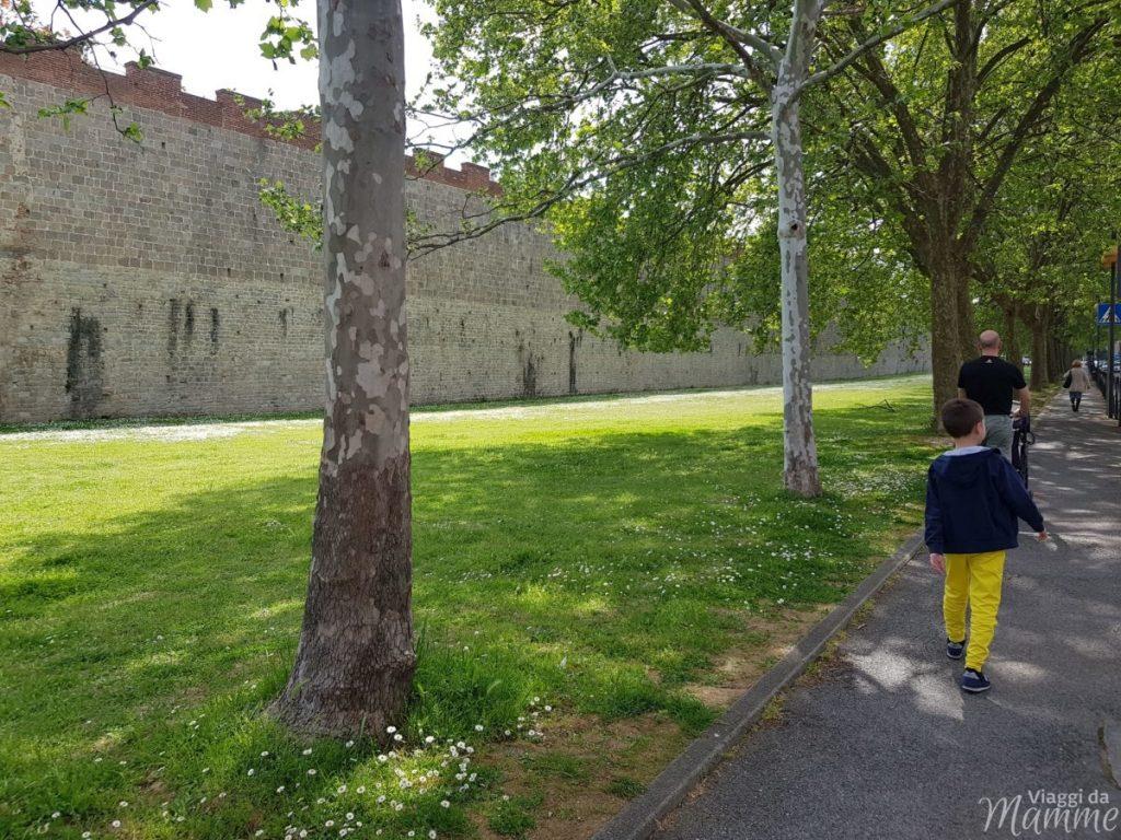 cosa vedere a Pisa e dintorni