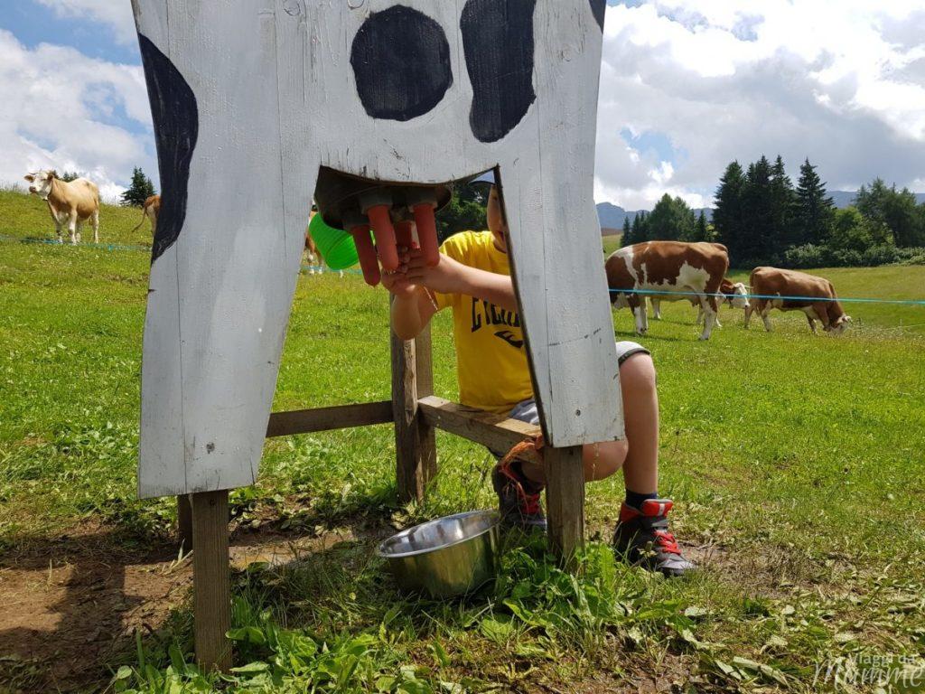"""Alpe di Siusi estate: una giornata per malghe con bambini -""""contadino"""" Andrea-"""