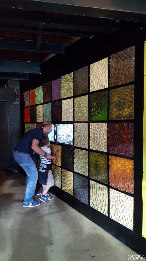 Visitare l'Acquario di Genova con i bambini -analisi dei coralli-