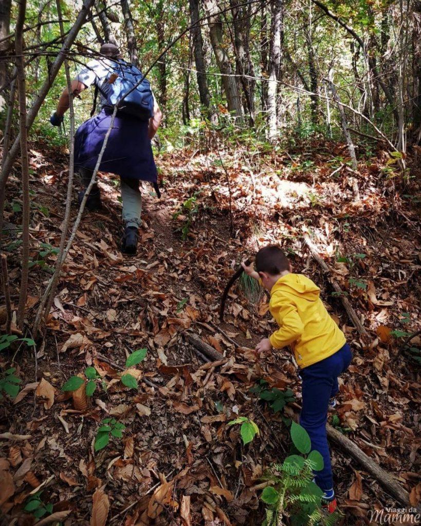 Andar per castagne in Lombardia con bambini: Colle Brianza