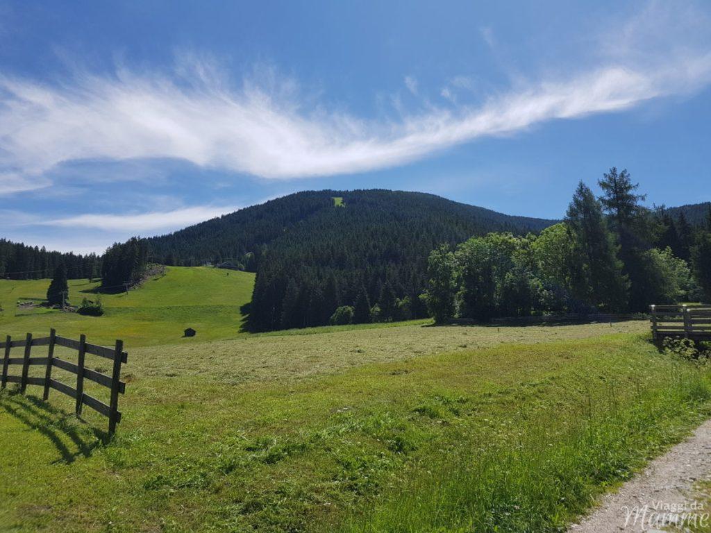 Alta Val Pusteria con bambini cosa fare e cosa vedere -Monte Elmo-