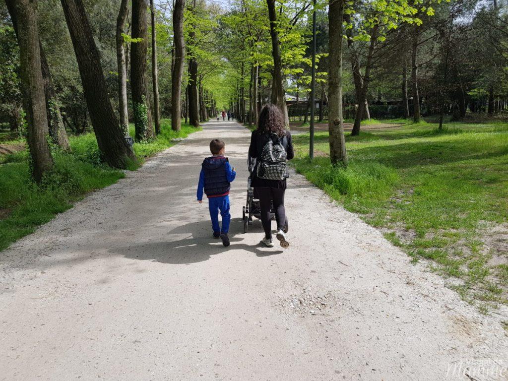 Vacanza in Versilia con bambini: cosa fare a Viareggio e dintorni -Pineta di Ponente-